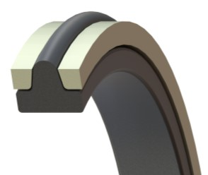 Oil Amp Gas Seals For The Most Demanding Applications Barnwell